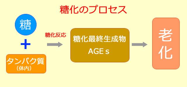 糖化のプロセス