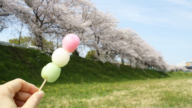 団子と桜並木